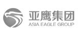 亚鹰集团网页设计