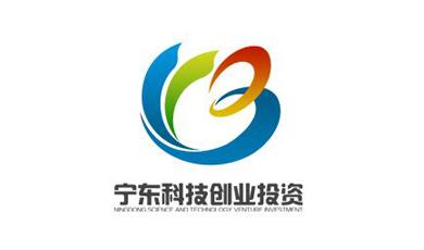 宁东科技创业投资